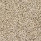 Team Player - Color Cooperative Texture 12 ft. Carpet