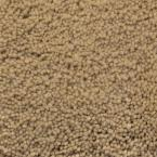 Luxurious II - Color Summer Sand 12 ft. Carpet