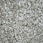Carpet Sample - Refined Manner I - Color Lindsay Texture 8 in. x 8 in.