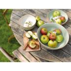 Denby Heritage Orchard Collection