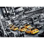 100 in. x 0.25 in. Cabs Queue Wall Mural