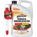 1.3 Gal. Weed and Grass Accushot Sprayer