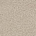 Beekman II - Color Potters Clay 12 ft. Carpet