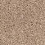 Enthusiastic I - Color Oyster Shell 12 ft. Carpet