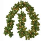 9 ft. Pre-Lit Carolina Fir Garland with Multi Colored Lights