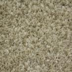 Shackelford II - Color Expedition 12 ft. Carpet
