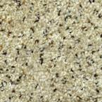 Carpet Sample - Gratitude II - Color Chisholm Texture 8 in. x 8 in.