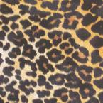 Leopard Print 8 in. x 8 in. Standard Finish Ceramic Floor and Wall Tile (7.1 sq. ft. / case)