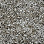 Carpet Sample - True Classic II - Color Rockford Texture 8 in. x 8 in.