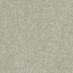 Carpet Sample - Pagliuca II - Color Silver Lining Texture 8 in. x 8 in.