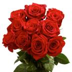 Red Roses Best of The Best (125 Extra Long Stems)