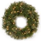 Atlanta Spruce 24 in. Artificial Wreath with Clear Lights