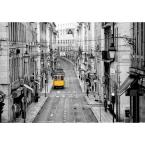 144 in. W x 100 in. H Streets of Lisbon Wall Mural
