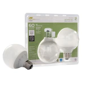 EcoSmart 14-Watt (60W) Soft White Globe CFL Light Bulb (2-Pack) (E)*