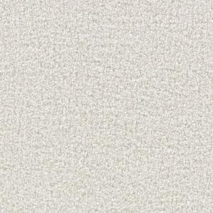 Martha Stewart Living Boscobel Gull - 6 in. x 9 in. Take Home Carpet Sample