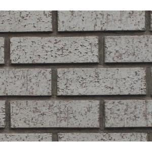Superior Building Supplies Gray Stone 8 inch x 8 inch x 3/4 inch Faux New Brick... by Superior Building Supplies