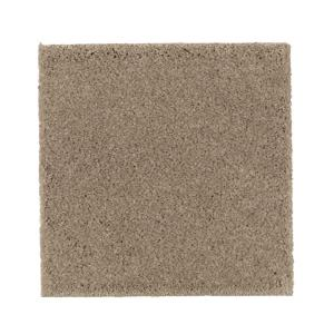 Petproof bluff color true taupe texture 12 ft carpet for Taupe color carpet