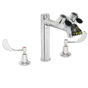 Speakman Eyesaver 8 inch 2-Handle Laboratory Faucet with Eye/Face Wash in...