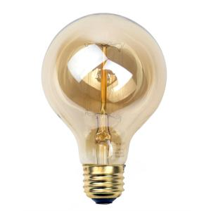 Newhouse Lighting 60-Watt Incandescent G25 Thomas Edison Vintage Filament Globe... by Newhouse Lighting