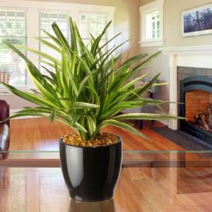 Artificial Plants & Flowers - Home Decor - The Home Depot