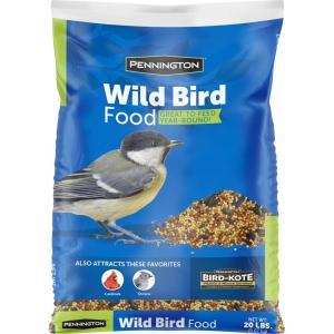 Multiple Bird Species