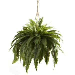 Nearly Natural Double Giant Boston Fern Hanging Basket by Nearly Natural