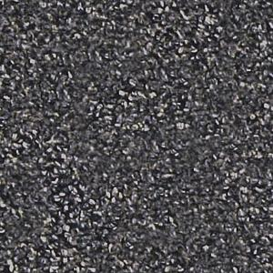 TrafficMaster Benchmark 26 - Color Passing Storm 12 ft. Carpet