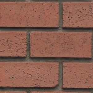 Superior Building Supplies Red Brick 8 inch x 8 inch x 3/4 inch Faux New Brick... by Superior Building Supplies