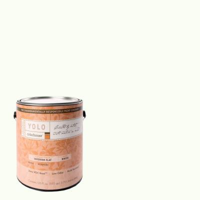 YOLO Colorhouse 1-gal. Imagine .02 Flat Interior Paint-DISCONTINUED