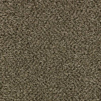 Home Decorators Collection New Castle - Color Established 12 ft. Carpet