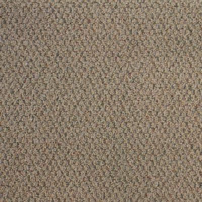Big Picture - Color Fuscous Textured Berber 12 ft. Carpet Product Photo