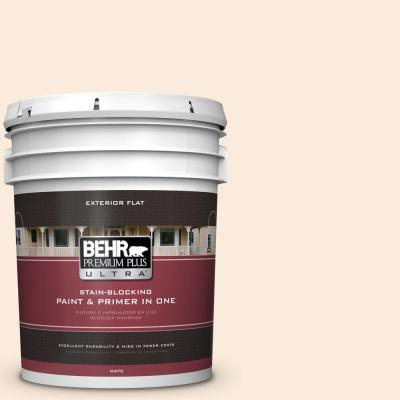 5-gal. #OR-W1 White Blush Flat Exterior Paint