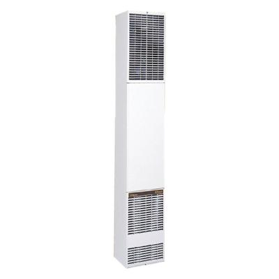 Forsaire 40,000 BTU/hr Counterflow Direct-Vent Wall Furnace Natural Gas Heater