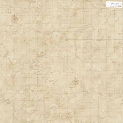 56 sq. ft. Neutral Map Toile Wallpaper
