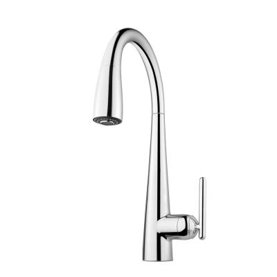 Pfister Lita Single-Handle Pull-Down Sprayer Kitchen Faucet with Soap Dispenser in Polished Chrome