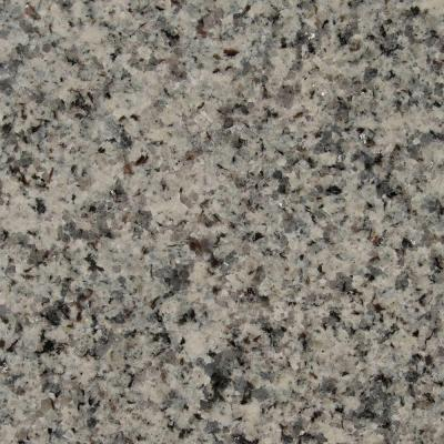 3 in. Granite Countertop Sample in Azul Platino Product Photo