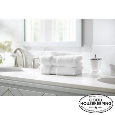 Plush Soft Cotton Hand Towel (Set of 2)