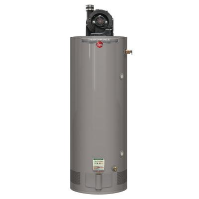 Performance 75 Gal. Tall 6 Year 75,100 BTU Liquid Propane Gas Power Vent Water Heater Product Photo