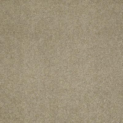 Tremendous II - Color Browning 12 ft. Carpet