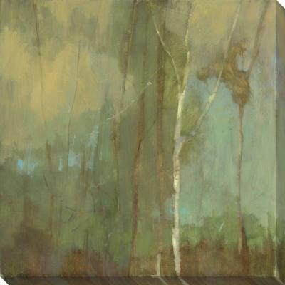 NEP Art 40 in. x 40 in. Upon Reflection III Oversized Canvas Gallery Wrap