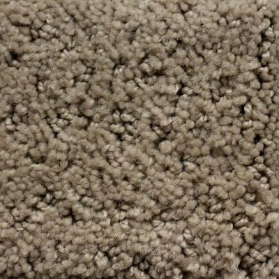 Softspring enchanting ii color urban taupe 12 ft carpet for Taupe color carpet