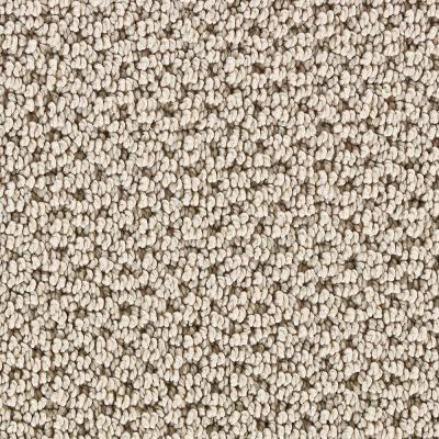 Mount Vernon Potters Clay - 6 in. x 9 in. Take Home Carpet Sample