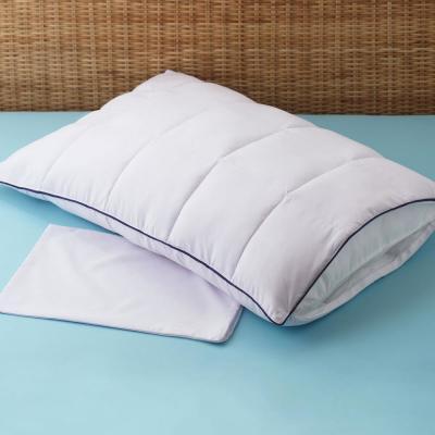 Allergen Barrier Pillow Enhancer and Travel Pillow