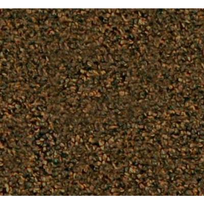 Benchmark 26 - Color Canyon 12 ft. Carpet