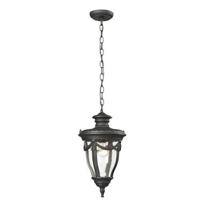 Titan Lighting Langley Collection 1-Light Textured Matte Black Outdoor Pendant