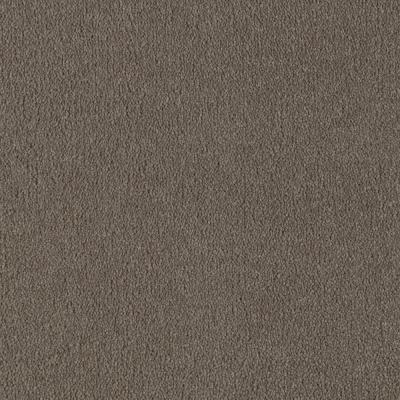 Home decorators collection worthington color wheat for Taupe color carpet