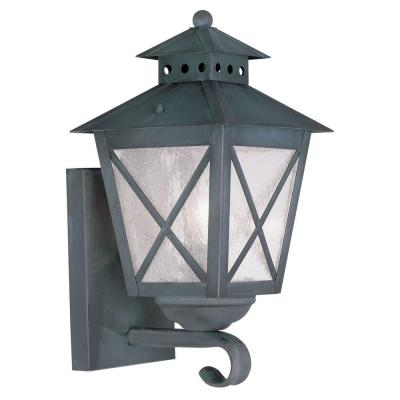 Filament Design Providence Wall-Mount 1-Light Outdoor Charcoal Incandescent Lantern