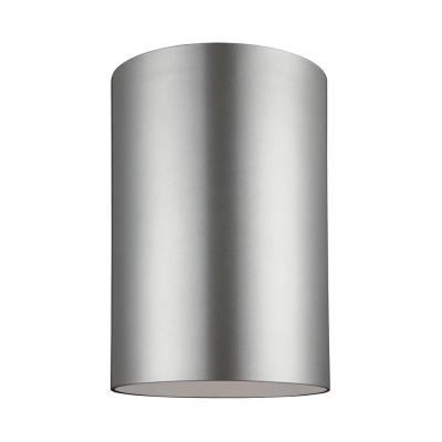 Sea Gull Lighting Outdoor Painted Brushed Nickel 1-Light Outdoor Flush Mount