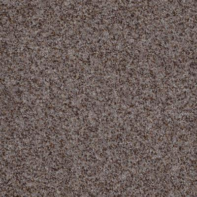 Home Decorators Collection Cressbrook II (T) - Color Tumbleweed 12 ft. Carpet