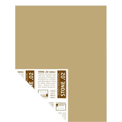 YOLO Colorhouse 12 in. x 16 in. Stone .02 Pre-Painted Big Chip Sample